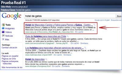 Curso seo para posicionamiento Web en Google 1